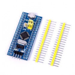 ARM Microcontroller
